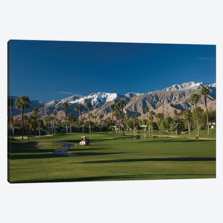 Palm trees in a golf course 4, Desert Princess Country Club, Palm Springs, Riverside County, California, USA Canvas Print #PIM12632} by Panoramic Images Canvas Wall Art