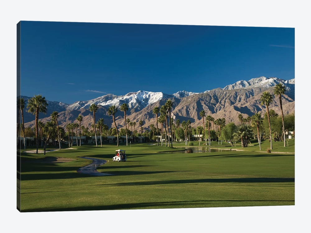 Palm trees in a golf course 4, Desert Princess Country Club, Palm Springs, Riverside County, California, USA by Panoramic Images 1-piece Canvas Print