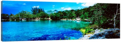Tranquil Lagoon, Cozumel, Mexico Canvas Print #PIM1263
