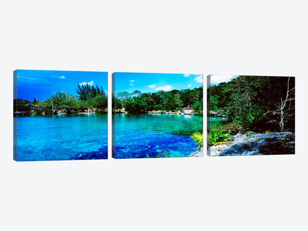 Tranquil Lagoon, Cozumel, Mexico by Panoramic Images 3-piece Canvas Artwork