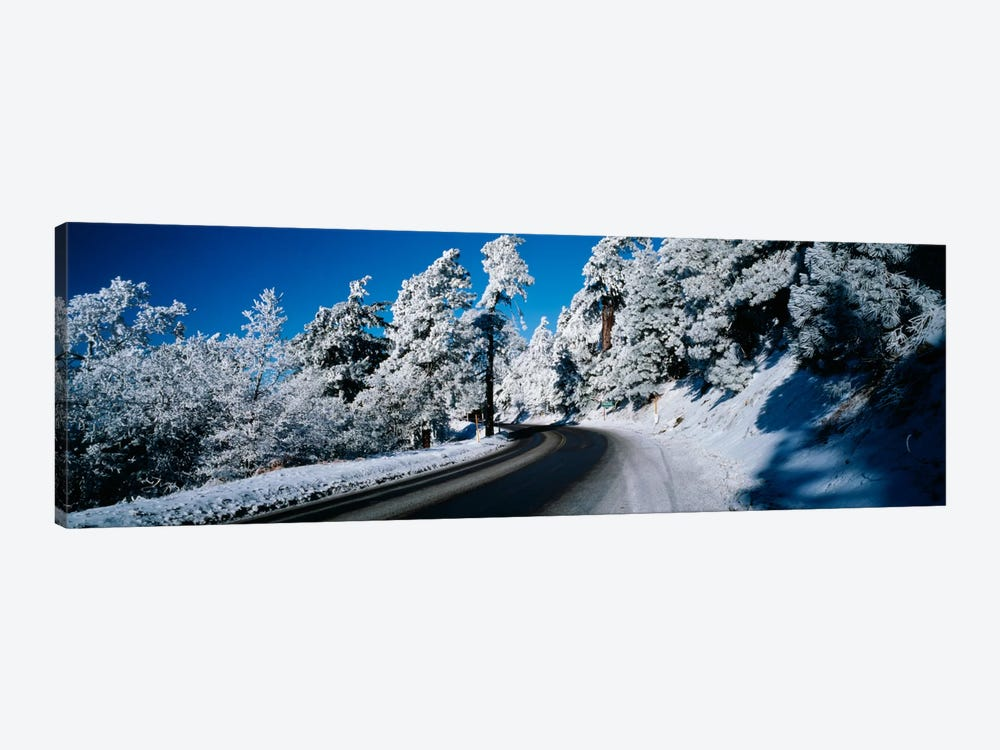 Road passing through a forestLake Arrowhead, San Bernardino County, California, USA by Panoramic Images 1-piece Canvas Art Print