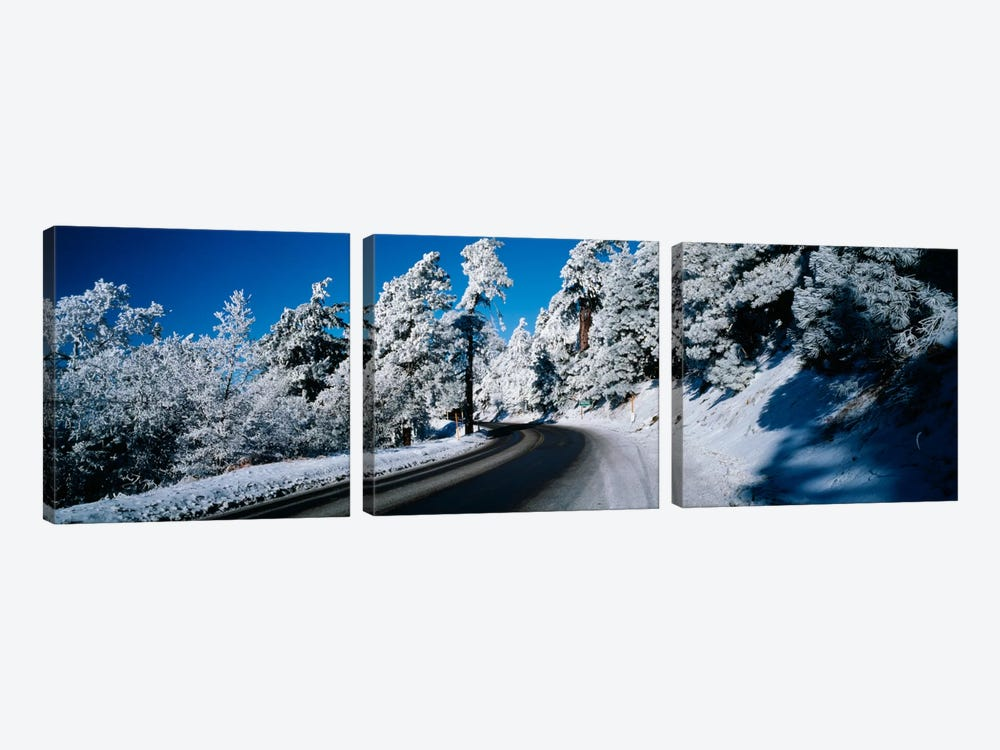 Road passing through a forestLake Arrowhead, San Bernardino County, California, USA by Panoramic Images 3-piece Canvas Art Print