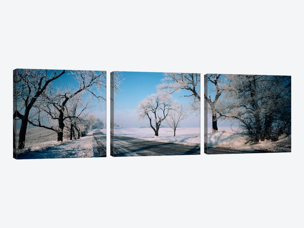 Road passing through winter fieldsIllinois, USA by Panoramic Images 3-piece Canvas Wall Art