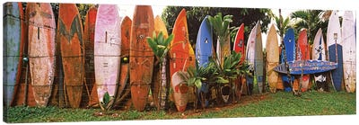 Arranged surfboards, Maui, Hawaii, USA Canvas Art Print