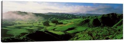 Farmland Taranaki New Zealand Canvas Print #PIM1288