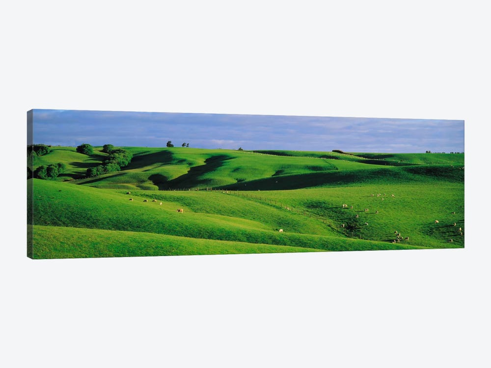 Farmland Southland New Zealand 1-piece Canvas Art
