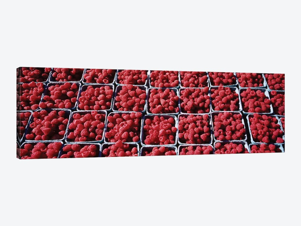 Cartons of Raspberries At A Farmer's Market, Rochester, Olmsted County, Minnesota, USA by Panoramic Images 1-piece Canvas Artwork