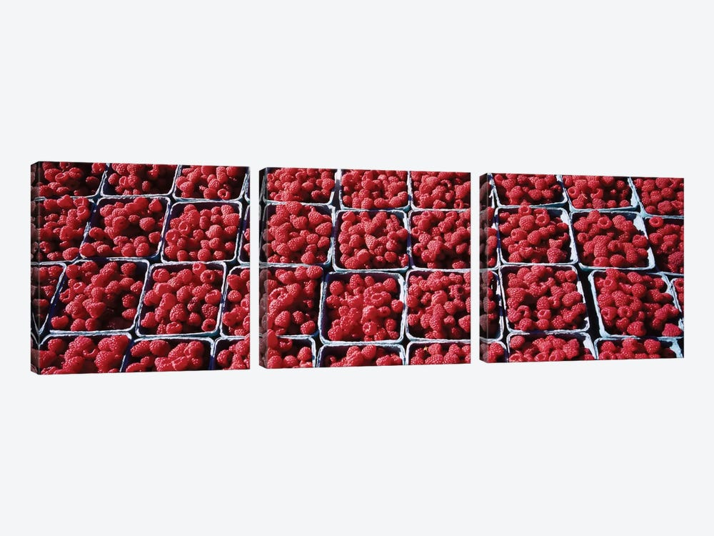 Cartons of Raspberries At A Farmer's Market, Rochester, Olmsted County, Minnesota, USA by Panoramic Images 3-piece Canvas Wall Art