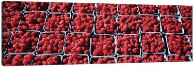 Cartons of Raspberries At A Farmer's Market, Rochester, Olmsted County, Minnesota, USA Canvas Art Print