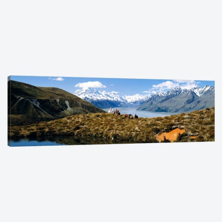 Horse Trekking Mt Cook New Zealand Canvas Print #PIM1297} by Panoramic Images Canvas Print