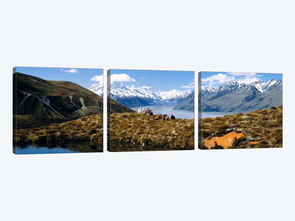 Horse Trekking Mt Cook New Zealand by Panoramic Images 3-piece Canvas Print