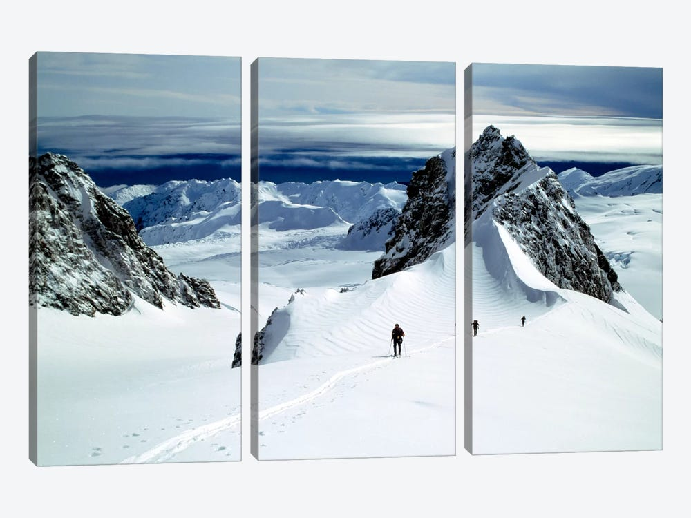 Upper Fox Glacier Westland NP New Zealand by Panoramic Images 3-piece Canvas Artwork