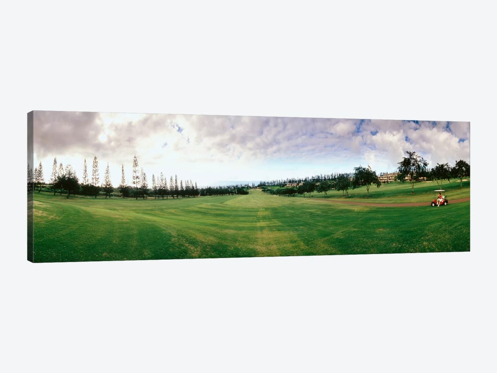 Golf Course Maui HI USA by Panoramic Images 1-piece Art Print