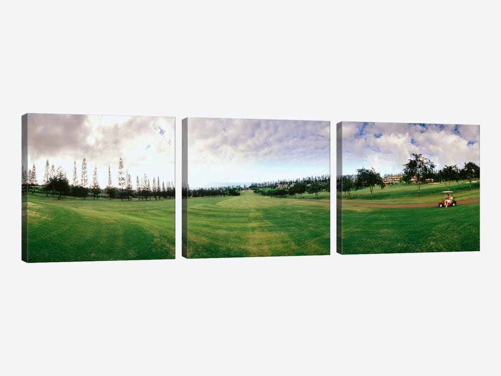 Golf Course Maui HI USA by Panoramic Images 3-piece Canvas Print