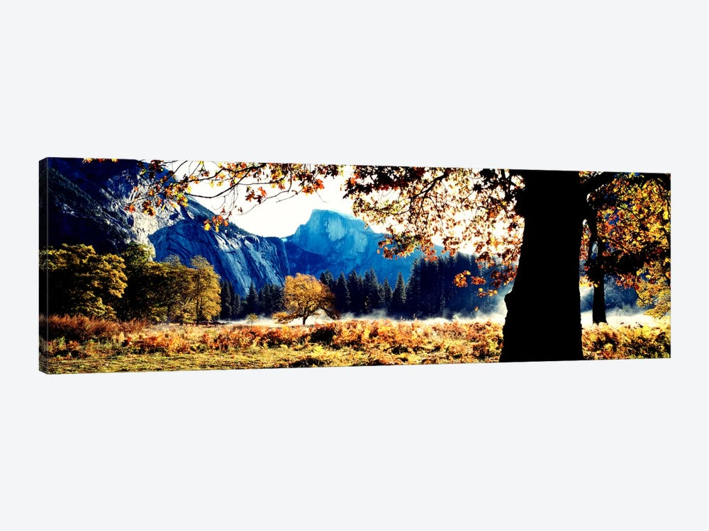 Half DomeYosemite National Park, California, USA 1-piece Canvas Art Print