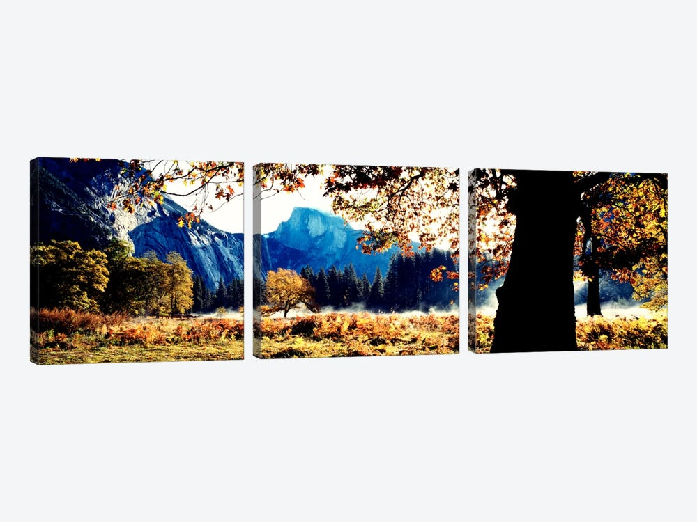 Half DomeYosemite National Park, California, USA by Panoramic Images 3-piece Canvas Print