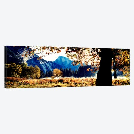 Half DomeYosemite National Park, California, USA Canvas Print #PIM1303} by Panoramic Images Canvas Art