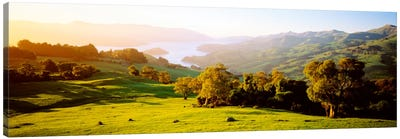 Akaroa Harbor Canterbury New Zealand Canvas Print #PIM1305