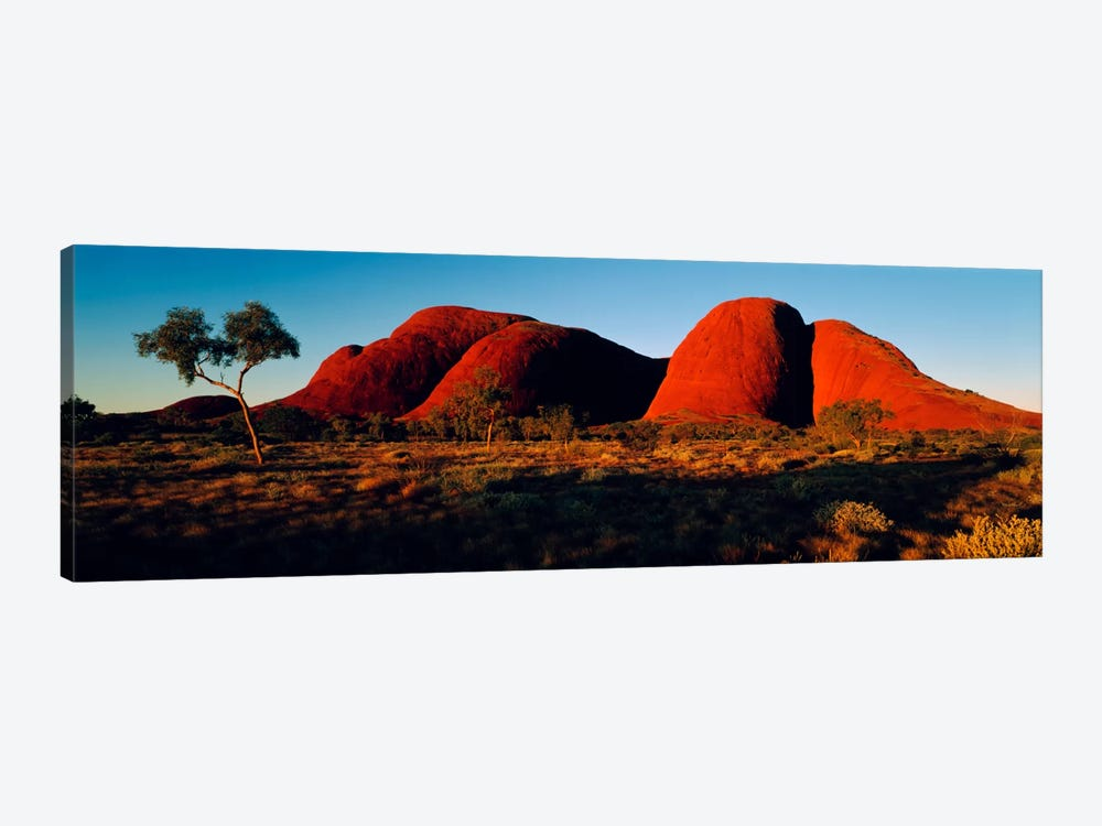 The Olgas N Territory Australia by Panoramic Images 1-piece Art Print