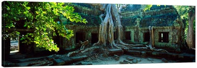 Wat Temple Complex of Ta-Prohm Cambodia Canvas Print #PIM1313