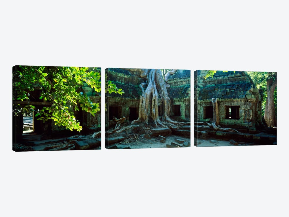 Wat Temple Complex of Ta-Prohm Cambodia by Panoramic Images 3-piece Canvas Artwork