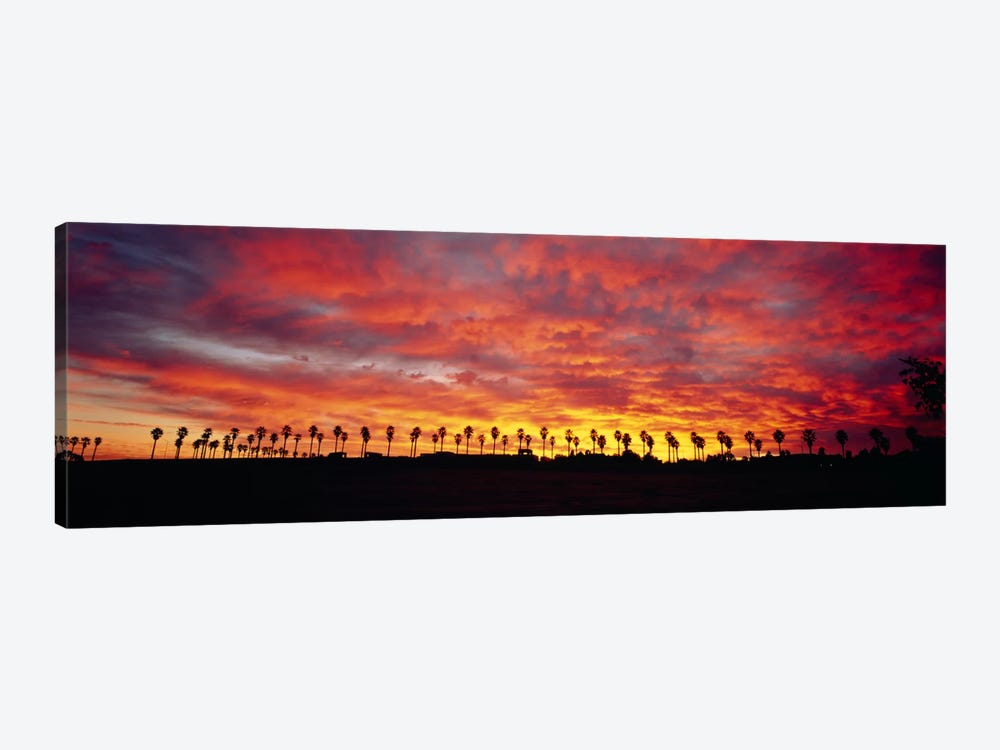 Silhouette of palm trees at sunrise, San Diego, San Diego County, California, USA by Panoramic Images 1-piece Art Print