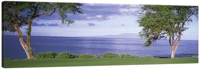 Makena Golf Course VI, Makena, Maui, Hawai'i, USA Canvas Art Print