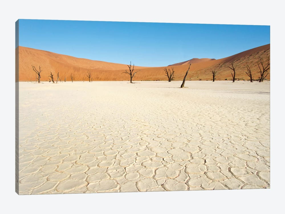 Desert Landscape III, Deadvlei, Namib Desert, Namib-Naukluft National Park, Namibia by Panoramic Images 1-piece Canvas Art Print
