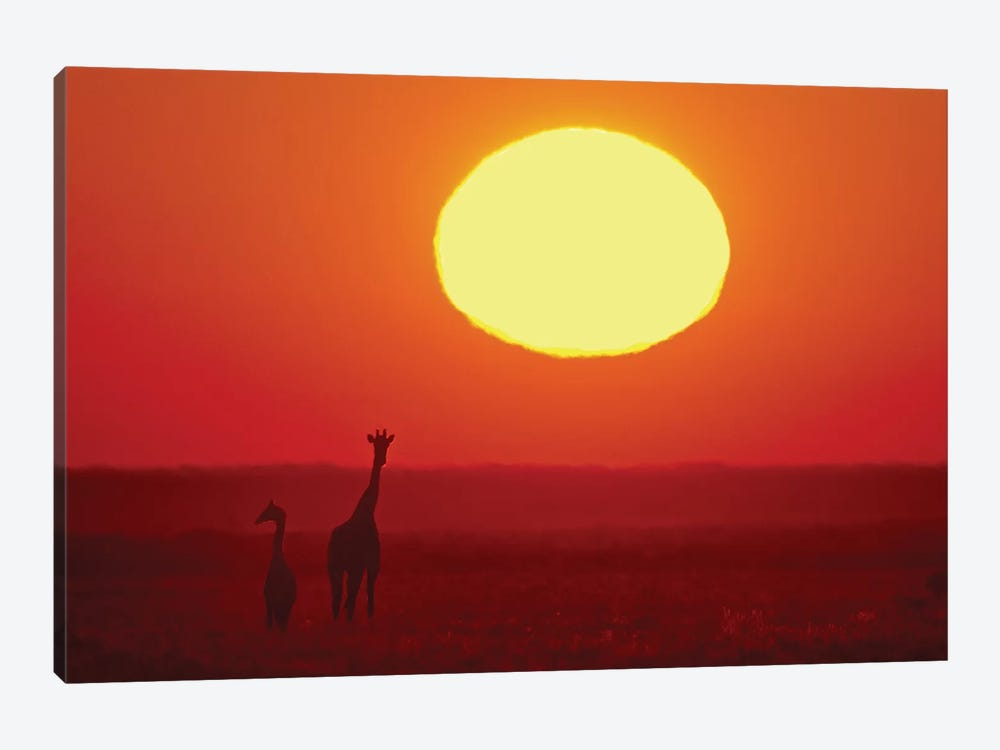 Southern Giraffes At Sunset I, Etosha National Park, Namibia by Panoramic Images 1-piece Canvas Wall Art