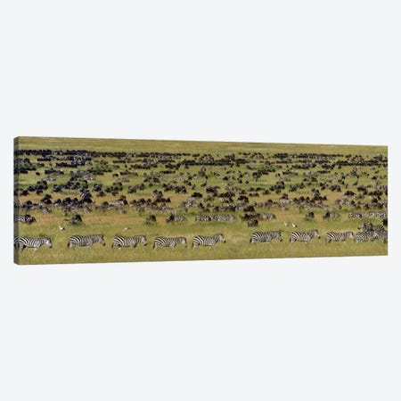 The Great Migration I, Serengeti National Park, Tanzania 3-Piece Canvas #PIM13931} by Panoramic Images Canvas Wall Art