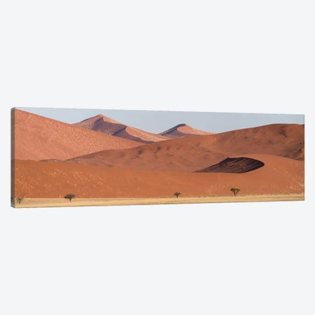 Desert Landscape XIX, Sossusvlei, Namib Desert, Namib-Naukluft National Park, Namibia Canvas Print #PIM13932} by Panoramic Images Canvas Wall Art