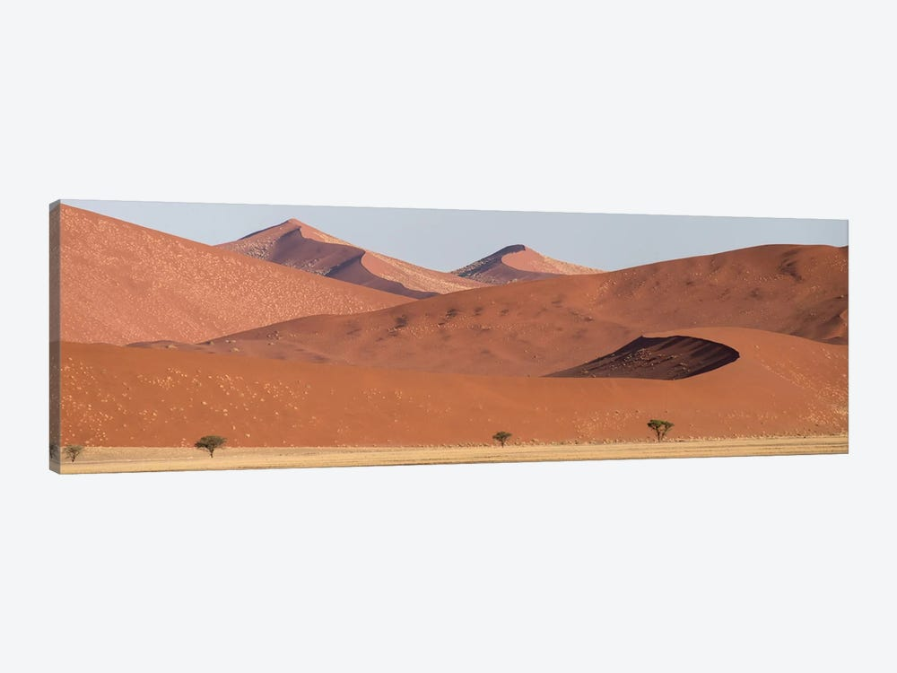 Desert Landscape XIX, Sossusvlei, Namib Desert, Namib-Naukluft National Park, Namibia by Panoramic Images 1-piece Canvas Art Print