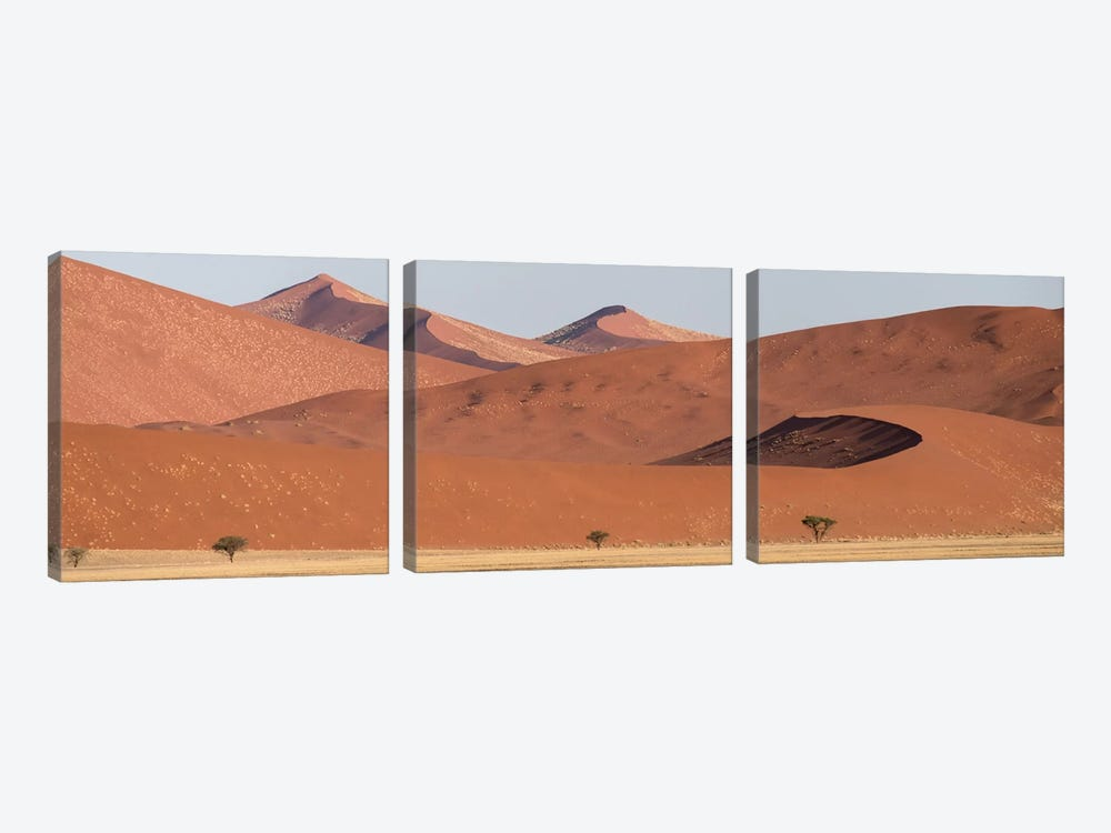 Desert Landscape XIX, Sossusvlei, Namib Desert, Namib-Naukluft National Park, Namibia by Panoramic Images 3-piece Canvas Print