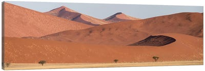 Desert Landscape XIX, Sossusvlei, Namib Desert, Namib-Naukluft National Park, Namibia Canvas Art Print