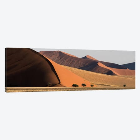 Desert Landscape XX, Sossusvlei, Namib Desert, Namib-Naukluft National Park, Namibia Canvas Print #PIM13933} by Panoramic Images Canvas Art