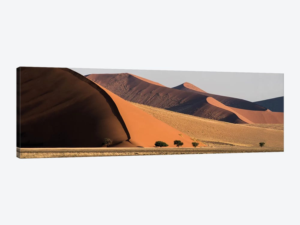 Desert Landscape XX, Sossusvlei, Namib Desert, Namib-Naukluft National Park, Namibia by Panoramic Images 1-piece Canvas Art