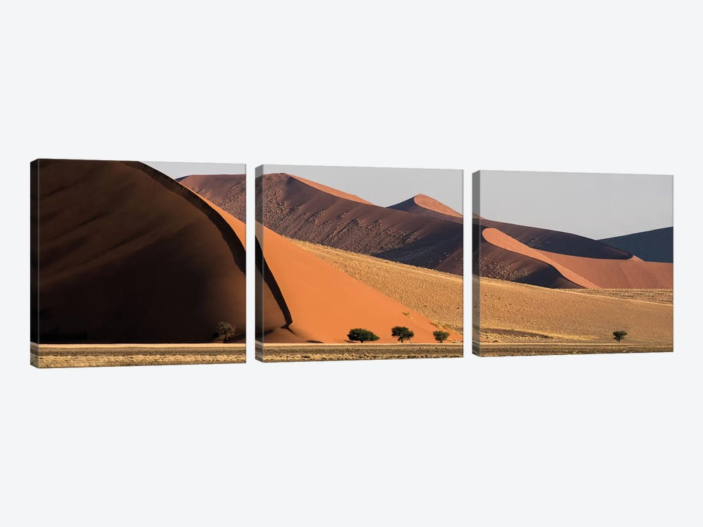 Desert Landscape XX, Sossusvlei, Namib Desert, Namib-Naukluft National Park, Namibia by Panoramic Images 3-piece Canvas Wall Art