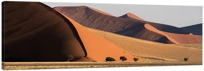 Desert Landscape XX, Sossusvlei, Namib Desert, Namib-Naukluft National Park, Namibia Canvas Art Print