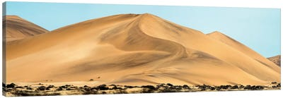 Desert Landscape, Walvis Bay, Namibia Canvas Art Print