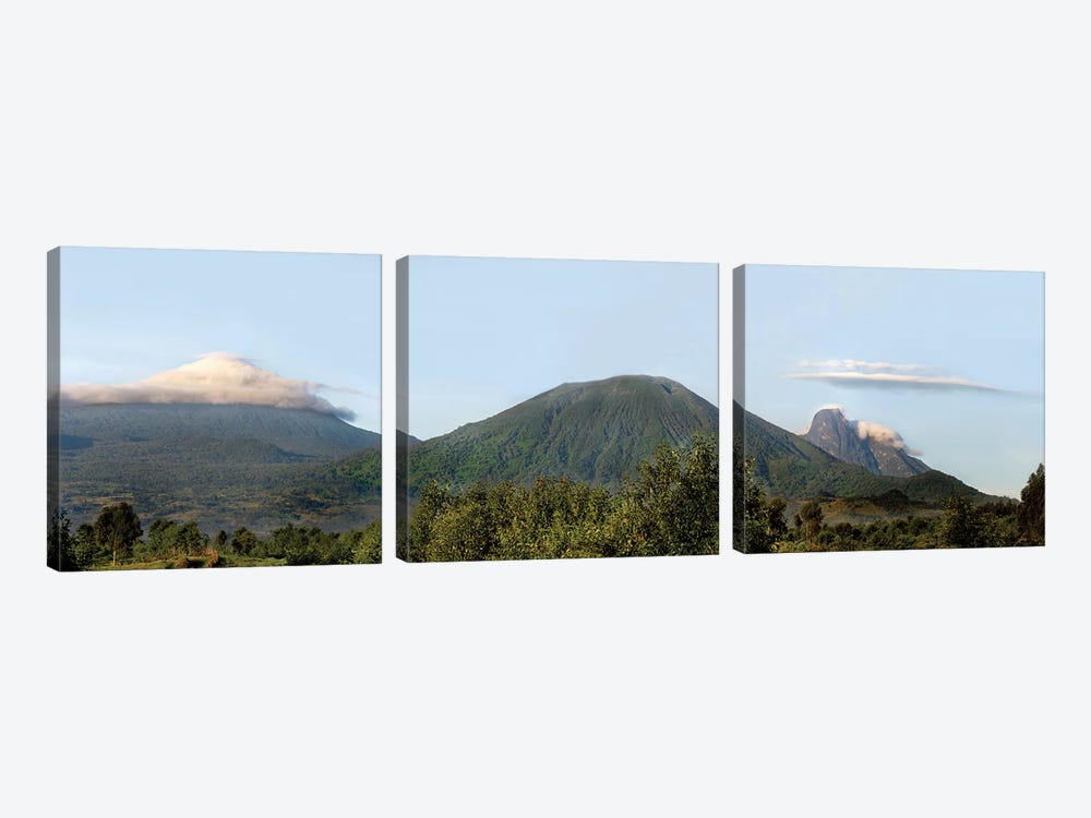 Rainforest Landscape, Volcanoes National Park (Parc National des Volcans), Rwanda by Panoramic Images 3-piece Canvas Art