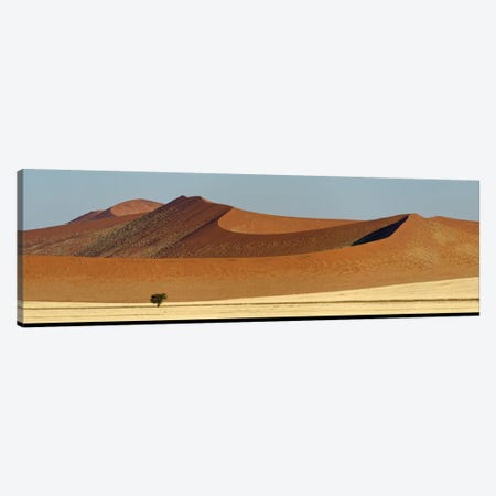 Desert Landscape XXI, Sossusvlei, Namib Desert, Namib-Naukluft National Park, Namibia Canvas Print #PIM13945} by Panoramic Images Canvas Artwork