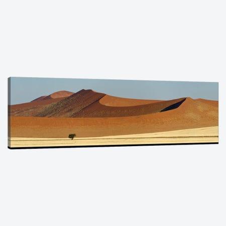 Desert Landscape XXI, Sossusvlei, Namib Desert, Namib-Naukluft National Park, Namibia Canvas Print #PIM13945} by Panoramic Images Canvas Artwork