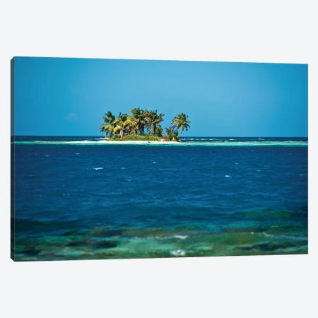 View Of Silk Caye Island With Palm Trees, Caribbean Sea, Stann Creek District, Belize Canvas Print #PIM13954} by Panoramic Images Art Print