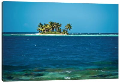 View Of Silk Caye Island With Palm Trees, Caribbean Sea, Stann Creek District, Belize Canvas Art Print