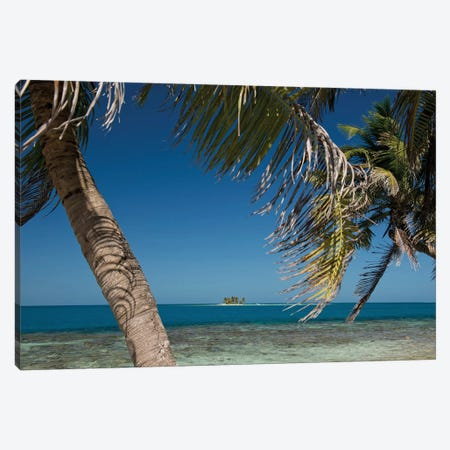 Seascape, Gladden Spit and Silk Cayes Marine Reserve, Gulf of Honduras, Caribbean Sea, Belize Canvas Print #PIM13955} by Panoramic Images Art Print