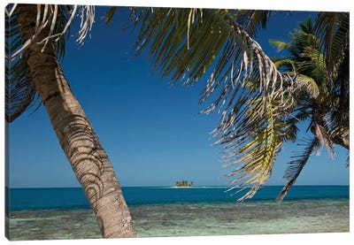 Seascape, Gladden Spit and Silk Cayes Marine Reserve, Gulf of Honduras, Caribbean Sea, Belize Canvas Art Print