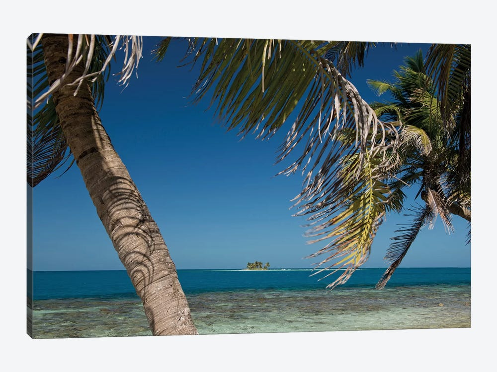 Seascape, Gladden Spit and Silk Cayes Marine Reserve, Gulf of Honduras, Caribbean Sea, Belize 1-piece Canvas Wall Art