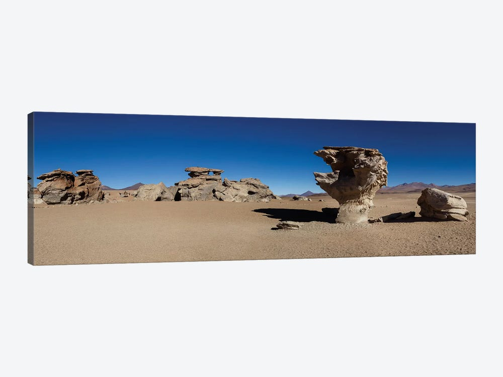 Stone Tree, Eduardo Abaroa Andean Fauna National Reserve, Sur Lipez Province, Potosi Department, Bolivia by Panoramic Images 1-piece Canvas Artwork