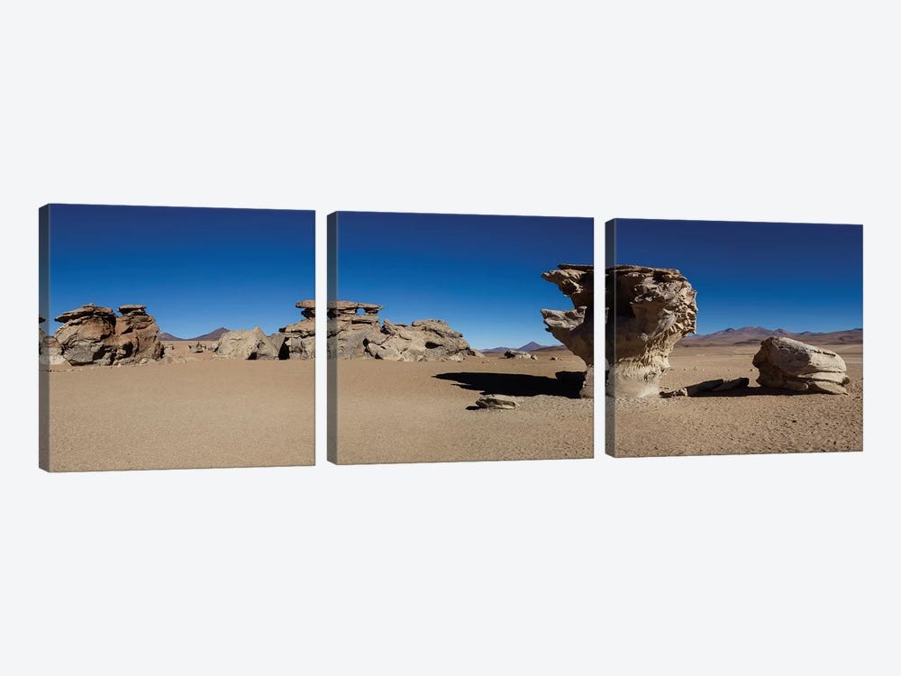 Stone Tree, Eduardo Abaroa Andean Fauna National Reserve, Sur Lipez Province, Potosi Department, Bolivia by Panoramic Images 3-piece Canvas Wall Art
