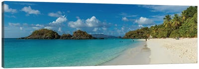 Trunk Bay II, St. John, U.S. Virgin Islands Canvas Print #PIM13973